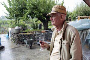 Siciliano di vino, da vigna sperimentale a vino senza solfiti aggiunti